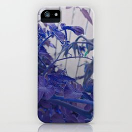 Blue Greenery Katydid Grasshopper Plant Leaves iPhone Case