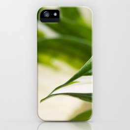 Hosta 3 iPhone Case