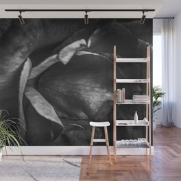 closeup rose background in black and white Wall Mural