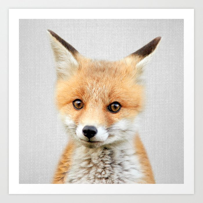 Baby Fox - Colorful Kunstdrucke