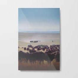 Dusty Bison Metal Print