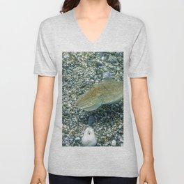 Cuttlefish Camouflage. Cuttlefish Swimming Underwater. Unisex V-Neck