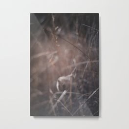 The Hush of Wind Metal Print