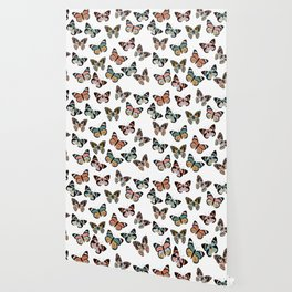 You Give Me Butterflies.. Wallpaper