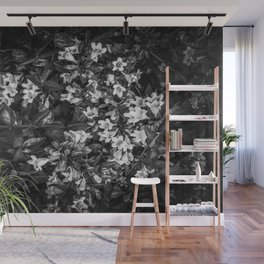 blooming flowers background in black and white Wall Mural