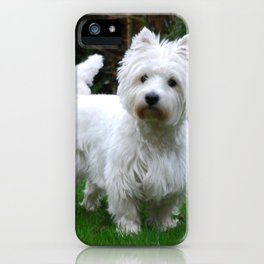 Westie in the garden iPhone Case