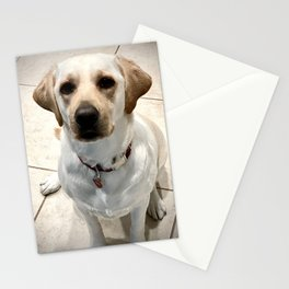 Lucy 2 Stationery Cards