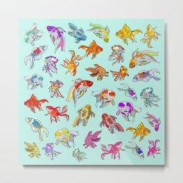 Aquarium Gold Fish Water Metal Print