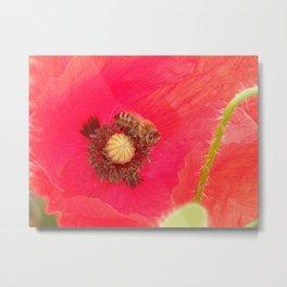 BEE & POPPY FLOWER  Metal Print