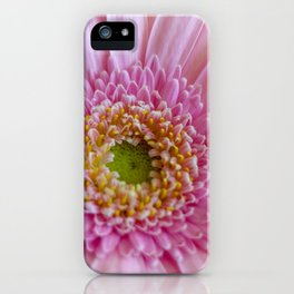 Pink Gerbera Flower in Detail with Yellow Bits iPhone Case