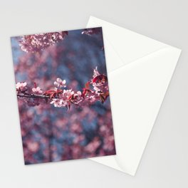 Cherry blossoms II Stationery Cards