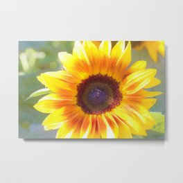 Watercolour Sunflower by Reay of Light Metal Print