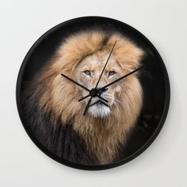Closeup Portrait of a Male Lion Wall Clock