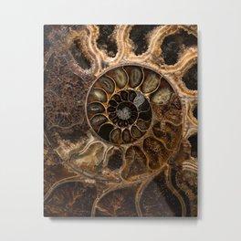 Earth treasures - Fossil in brown tones Metal Print