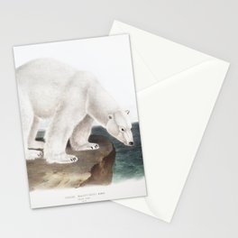 Polar Bear (Ursus maritimus) from the viviparous quadrupeds of North America (1845) illustrated by John Woodhouse Audubon (1812-1862) Stationery Cards