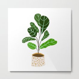 Fiddle leaf fig plant // Fiddle leaf fig artwork // Fiddle leaf decor Metal Print