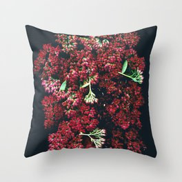 Burgundy Sedum Flowers Throw Pillow