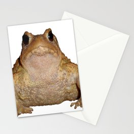 Bufo Bufo European Toad  Isolated Stationery Cards