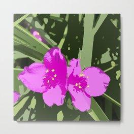 "Tradescantia ""Indian Paint"" pink flowers Metal Print"