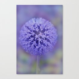 dreamy pastel flowers -5- Canvas Print