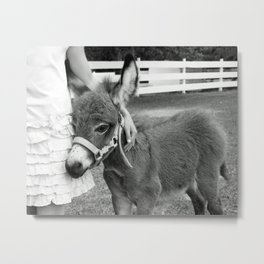 Girl and Baby Donkey Black and White Metal Print