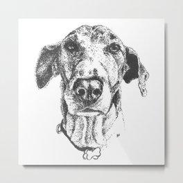 'Sup, dawg? Metal Print