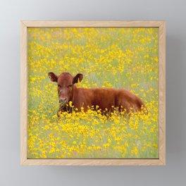 Baby Cow Framed Mini Art Print