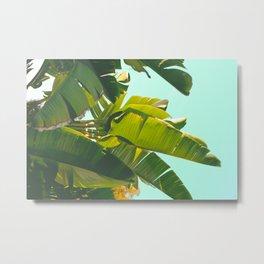 Banana Leaves II (Turquoise) Metal Print
