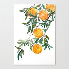 orange watercolor Canvas Print