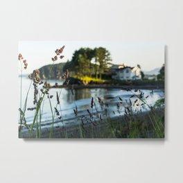 Small Alaskan Wildflowers pt.2 Metal Print
