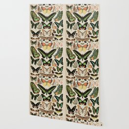 Papillon II Vintage French Butterfly Chart by Adolphe Millot Wallpaper