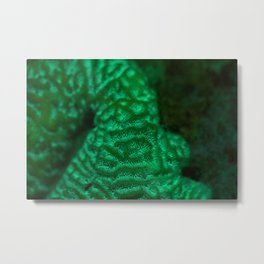 Flourescent mountaintop Metal Print
