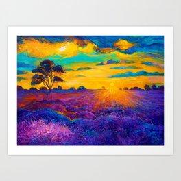Florence Sunset Flower Field Art Print