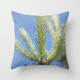 pine tree tops Throw Pillow
