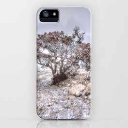 Madrone Tree iPhone Case