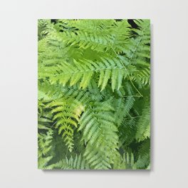 Lush green fern leaves, tropical forest illustration in vivid colors Metal Print