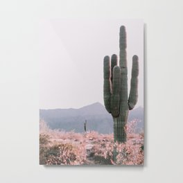 Arizona Cactus 3 Metal Print
