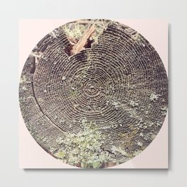 Tree Rings On Pastel Pink Metal Print