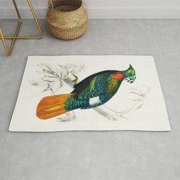 Bird Illustration Rug