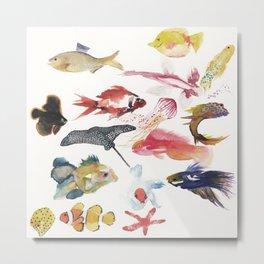 Fishy gathering Metal Print