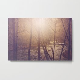 Forest Aglow Metal Print