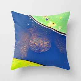 What Lies Beneath.... Throw Pillow