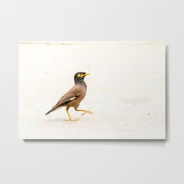Treurmaina Metal Print