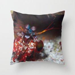 Mantis shrimp greeting her fans Throw Pillow