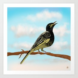 The Regent Honeyeater - Australian Precious Bird Art Print