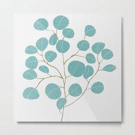 Eucalyptus No. 1 Metal Print