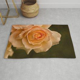 Dew Kissed Rose Floral Rug
