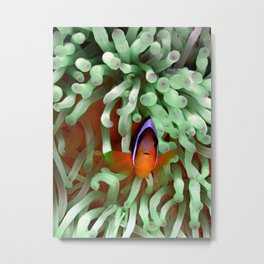 Clownfish in Pale Green Anemone Metal Print