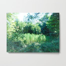 Nature Loves the Summertime Metal Print