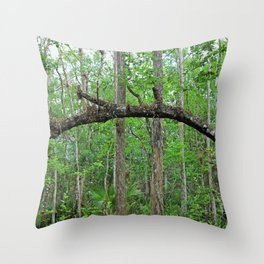 The Arch in Six Mile Throw Pillow